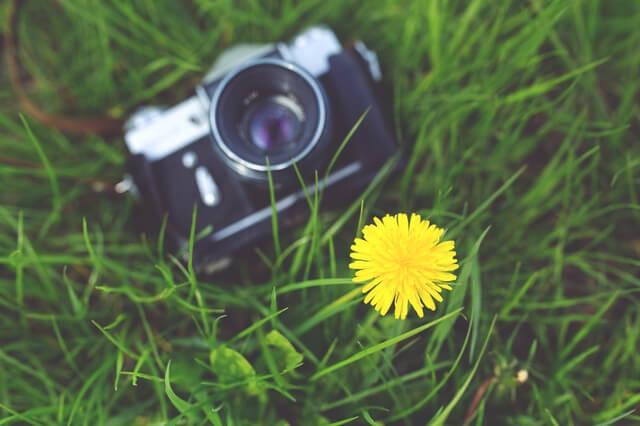 camera-photographer-yellow-photography-1